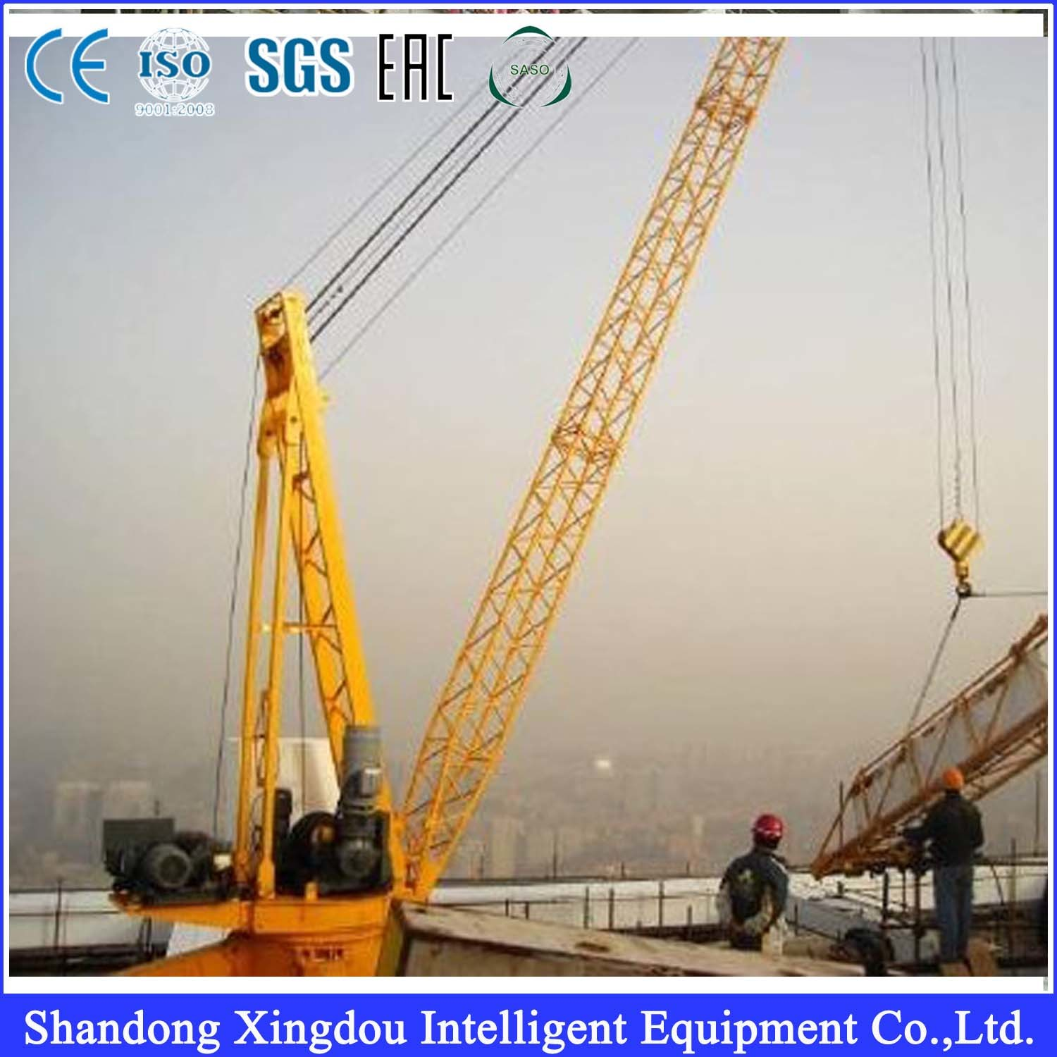 Customized Tower Crane/OEM Crane/Tower Crane Parts