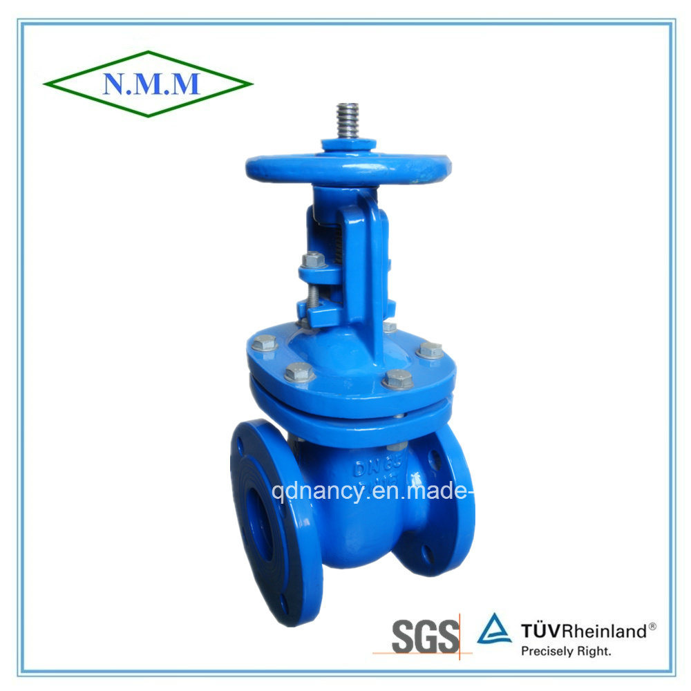 Cast Iron Wedge out Side Gate Valve