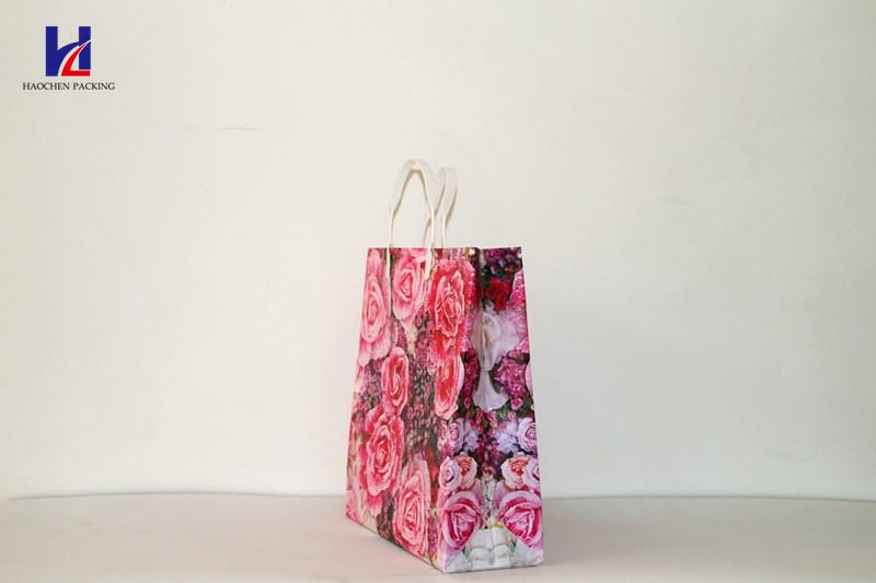 2017 Popular Shopping Bag Non-Woven Bag