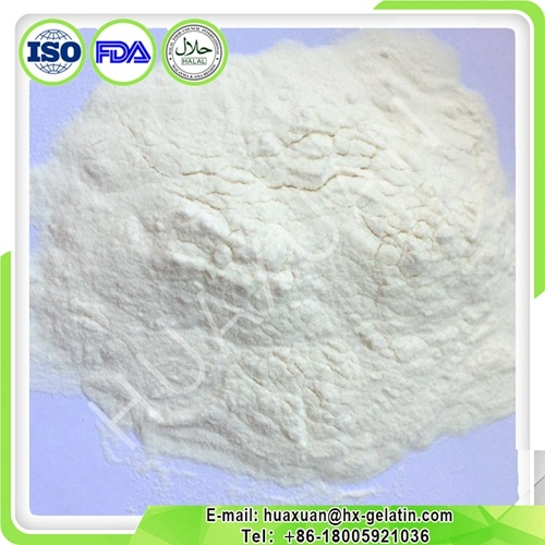 Made in China Hot Sell Fish Collagen