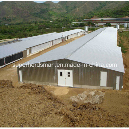 Steel Structure Poultry Farm Construction