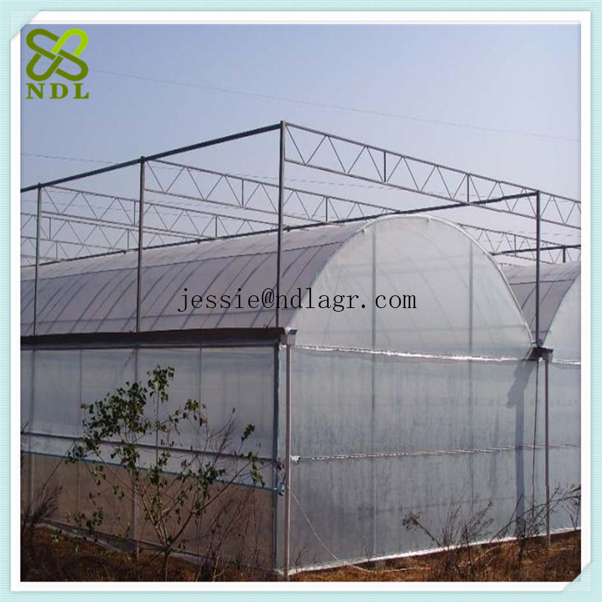 Agricultural Hydroponic Systems   Film Greenhouse