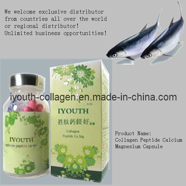 GMP, Top Collagen, Iyouth 100% Natural Golden Milkfish Collagen Peptide Calcium Magnesium Capsule Luxury, Health Food