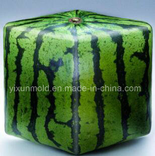 Customized Moulded Plastic Injection Heart Square Watermelon