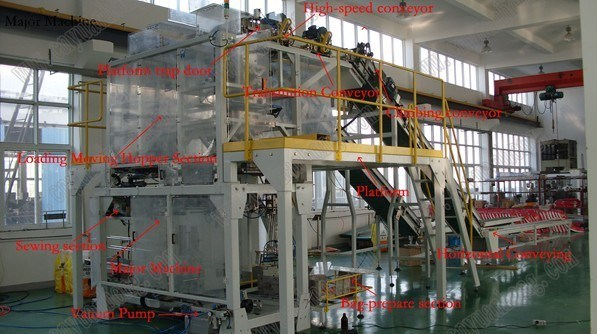 Kraft Paper Sacks Packing Machine/Sack Packaging Machine (GFS3D1)