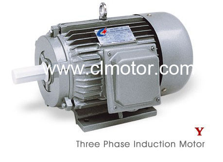 Three Phase Induction Motors Y Series China Electric