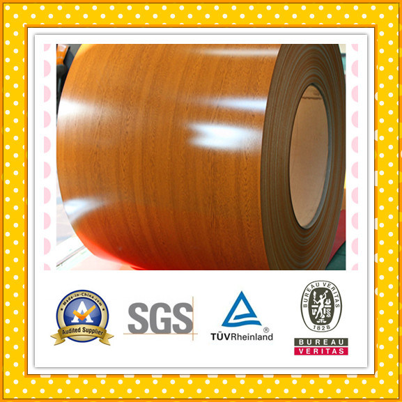 Prepainted Galvanized Cold Rolled PPGI Steel Coil