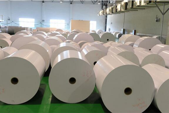 300GSM-400GSM C1s Fbb/Ivory Board