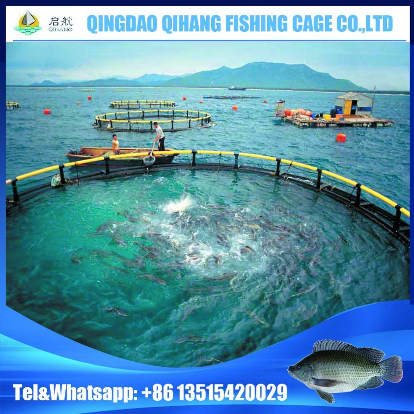 Floating Fish Farming Cage with Installing Service