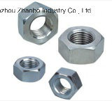 Hex Nut DIN934, Fastener, High Strength