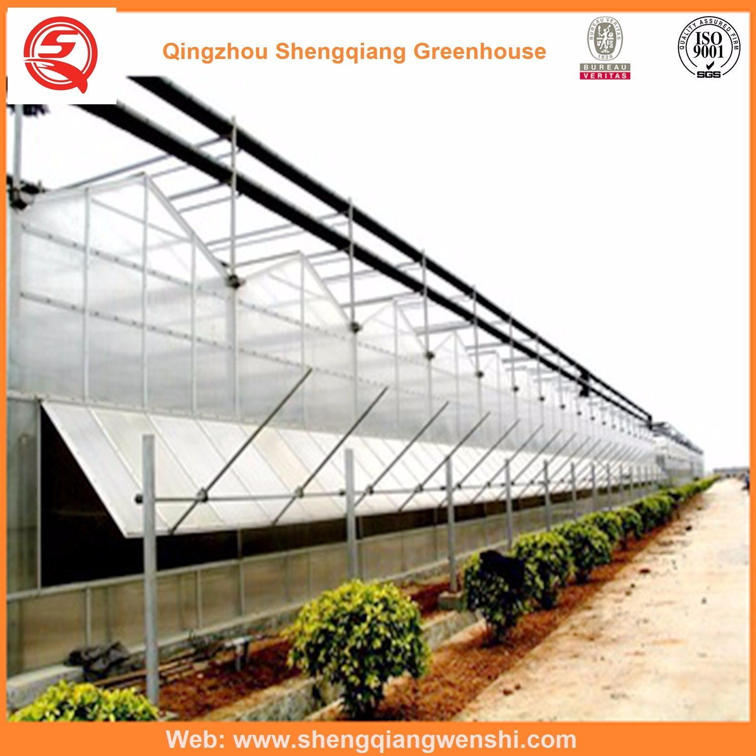 Agriculture Polycarbonate Sheet Greenhouses for Vegetables/Garden