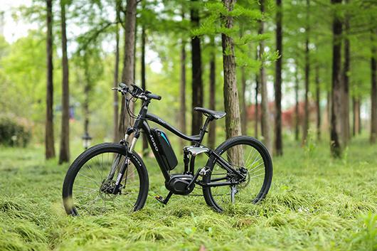 Mountain Motor Dirt Ce Electric Bike