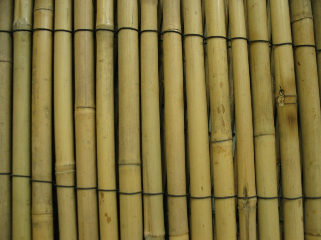 China Bamboo Fence China Bamboo Bamboo Fence : Bamboo Fence from joyfurn.en.made-in-china.com size 1024 x 768 jpeg 98kB