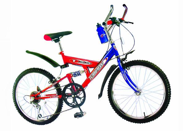 "20"" Bike with Single Suspension"
