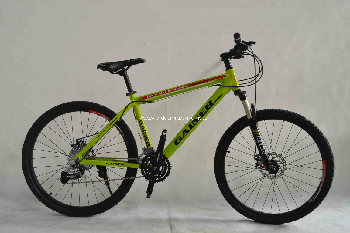 MTB Bike (WT-26401)