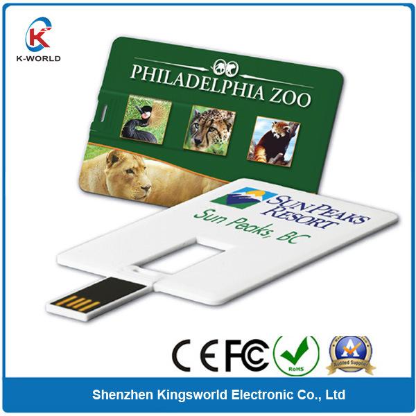 Expert 2GB Credit Card USB Flash Drive