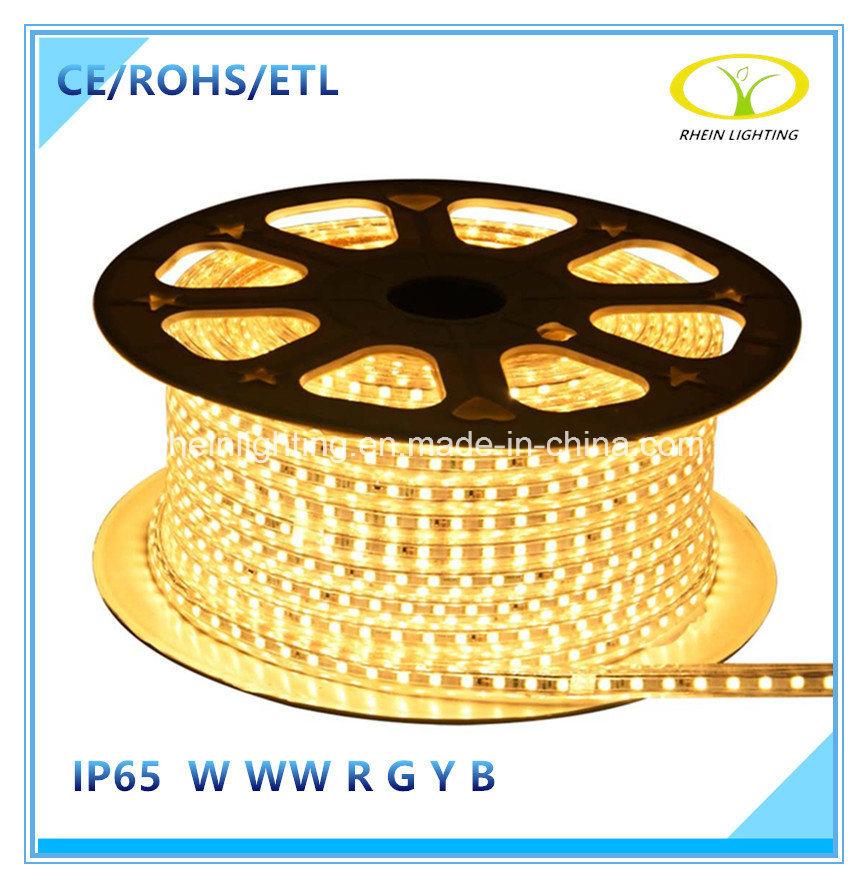 ETL Listed 120V IP65 LED Light Strip for North America