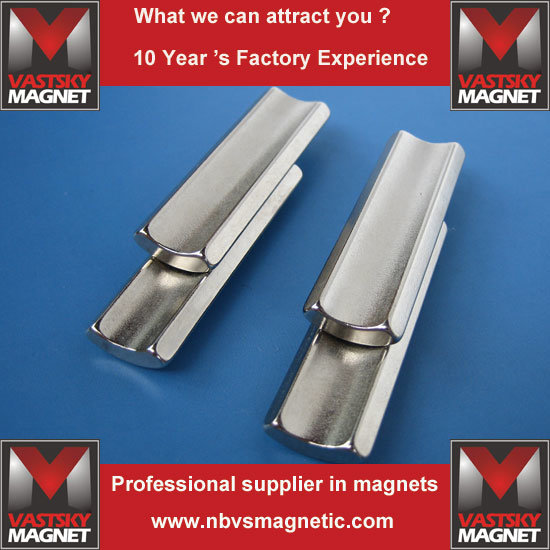 Permanent NdFeB Neodymium Motor Magnet in Arc Shape for Sale