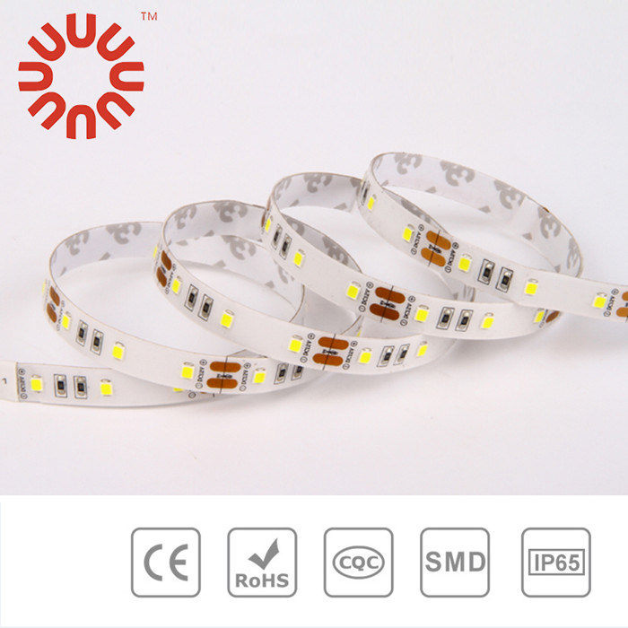 Low Voltage SMD3528 SMD2835 SMD5050 SMD5630 LED Strip
