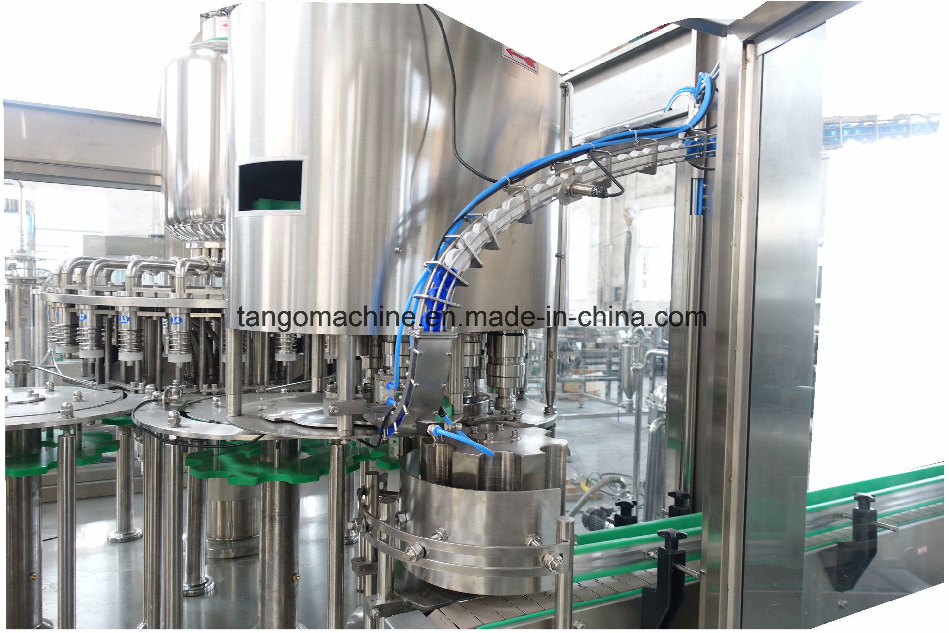 Automatic Pet Bottle Beverage Bottling Packing Capping Sealing Filling Line