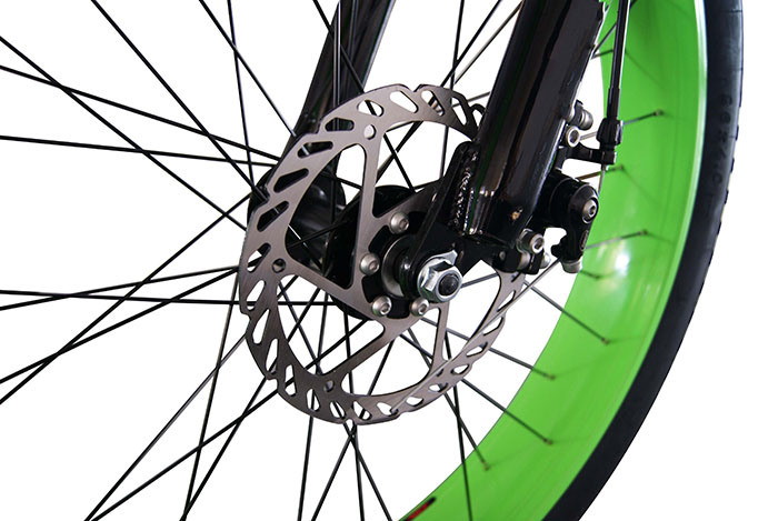 48V 750W Wheel Hub Motor Electric Fat Tyre Bike