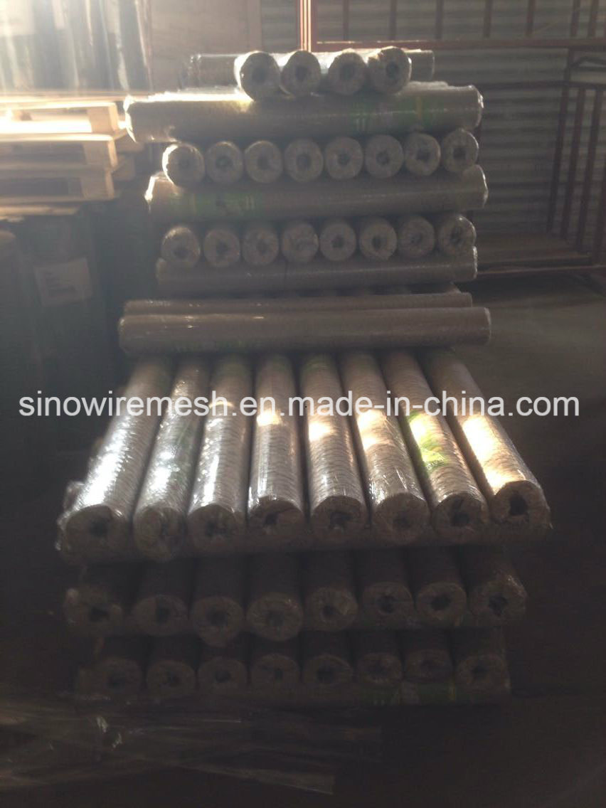 Electro Galvanized Hexagonal Wire Mesh Netting with High Quality (CE and SGS)