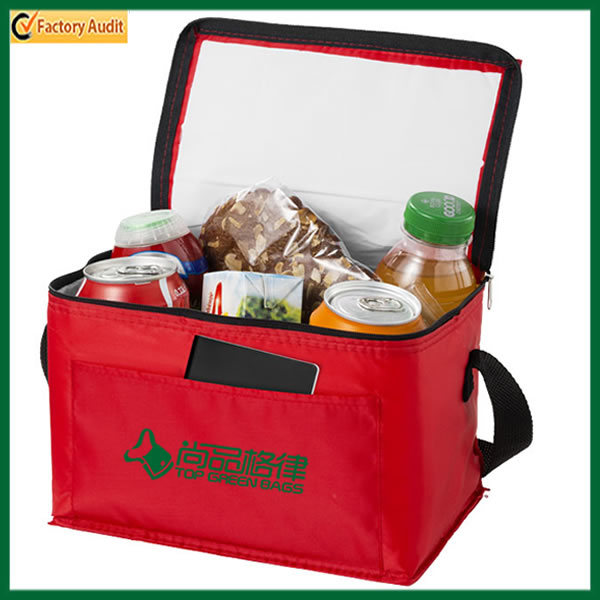 High Quality PEVA Lining Outdoor Can Cooler Bag (TP-CB366)
