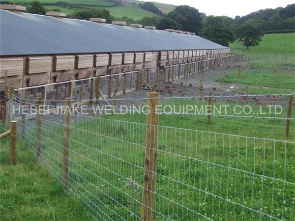 Best Price Hinge Jiont Grassland Fence Knitting Machine Cy-a