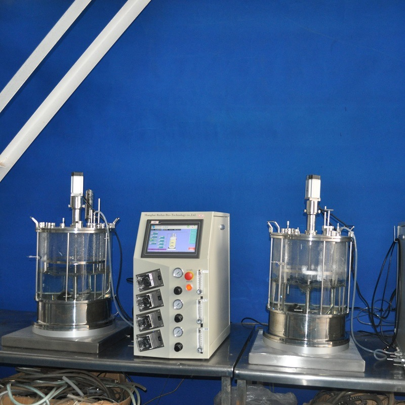 30 Lliters Cell Bioreactors (glass)