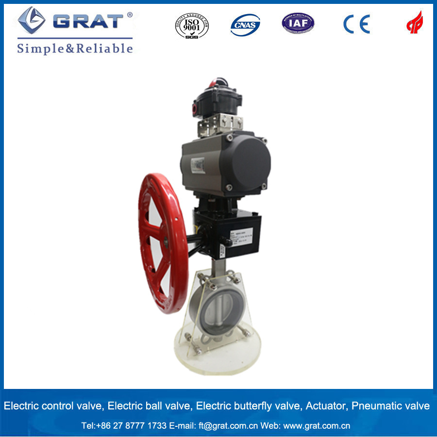 Dn300 Ss304 Double Action Pneuamtic Butterfly Valve with Manual Gear