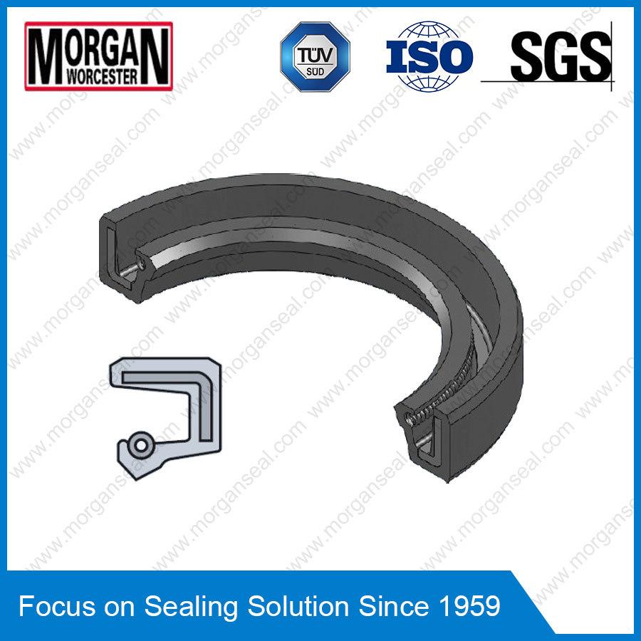 Sc Profile PTFE/Viton/NBR Rotary Shaft Single Lip Oil Seal