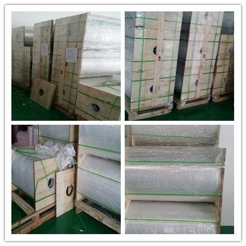 12u Clear Polyester Film for Packaging