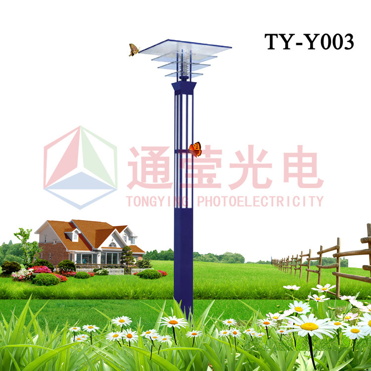 Solar Garden Light China: China Solar Garden Light (TY-Y003)
