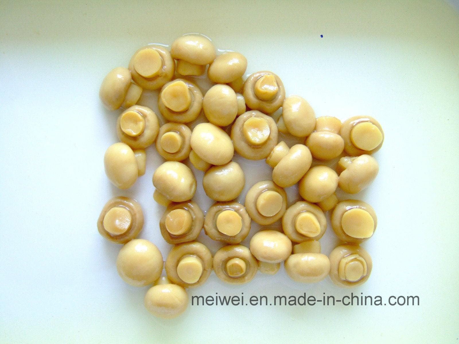 Mushroom Canned Champignons Mushroom