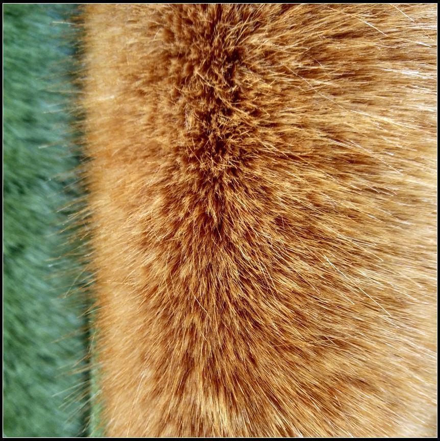 Soft Hand Feeling Long Pile Fake Fur Fabric