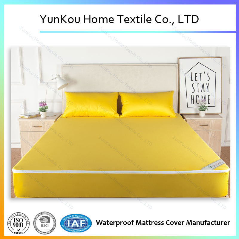 Anti-Dustmite Durable Waterproof Mattress Encasement with Quality Zipper
