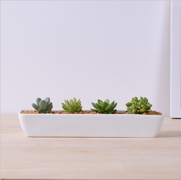 Ceramic Square White Flowerpot