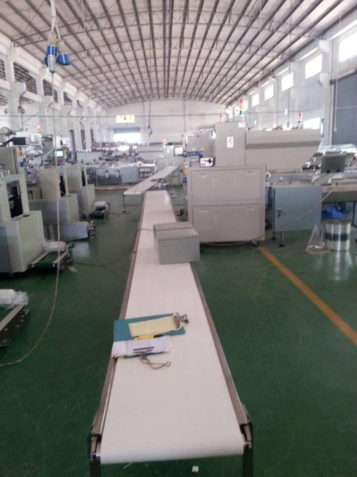 Flow-Pack Wrapping Machine for Big Soap (ZP380)