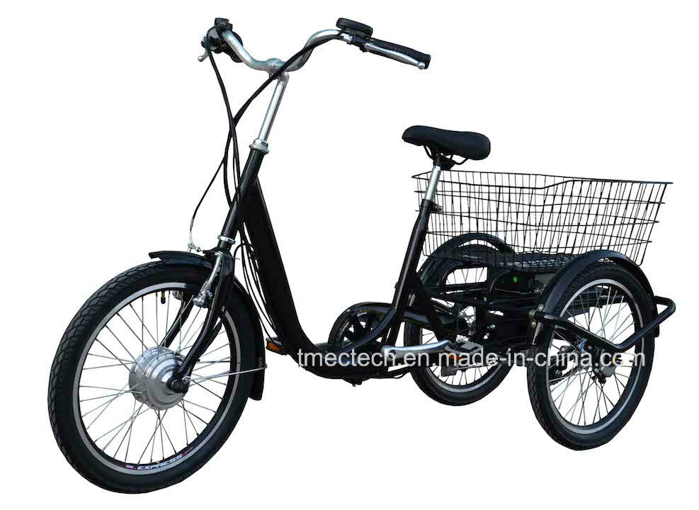 250watt 36V 10 Ah with Basket CE Electric Tricycle