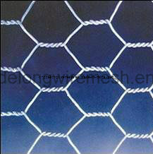 Hexagonal Wire Netting From China