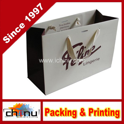 Paper Shopping Bags with Handle (2129)