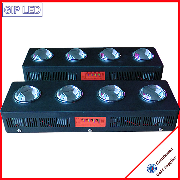 504W COB LED Grow Light for Medicine and Greenhouse
