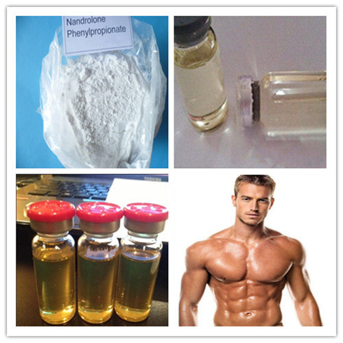 China High Purity Steroid Hormone Powder Nandrolone Decanoate