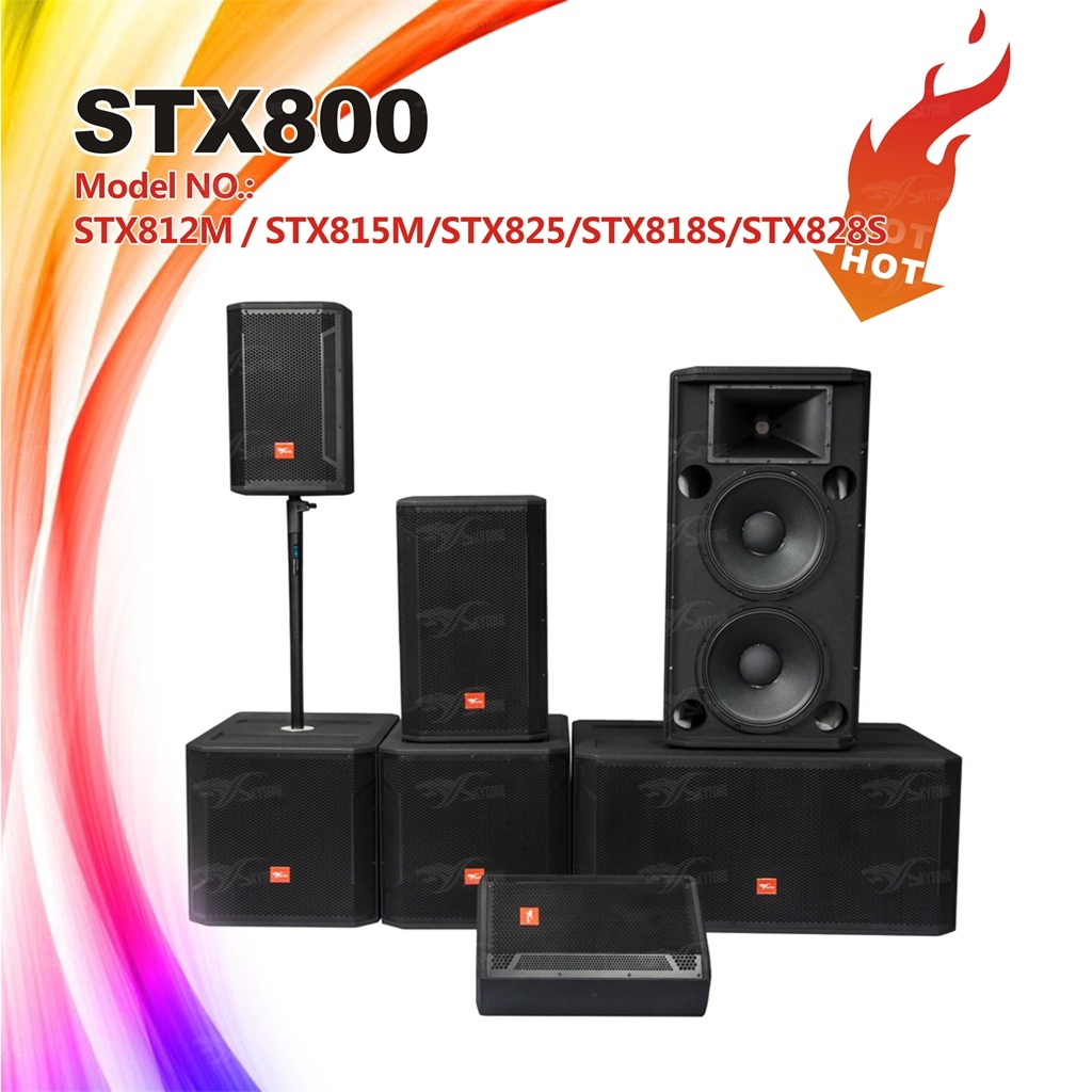 Skytone Stx800 Series DJ Loudspeaker Professional Audio Speaker
