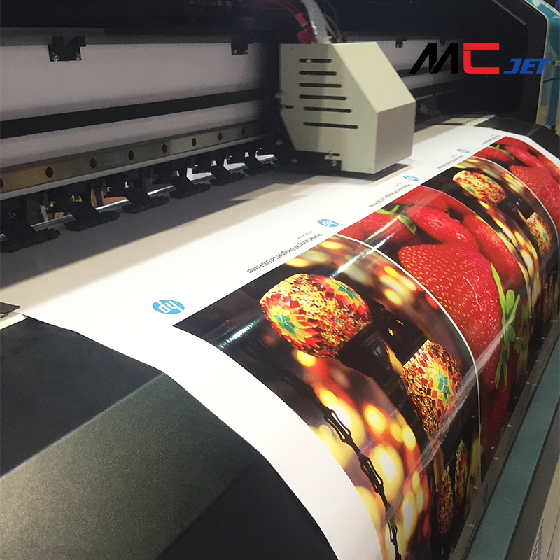 10FT (3.2m) Large Format Eco-Solvent Printer with Epson Dx10 Printhead