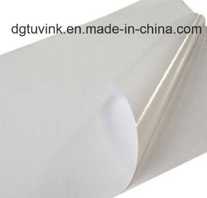 Vinyl Self adhesive Eco Solvent Printing Media