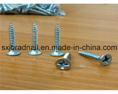 Wholesale Fastener Screws in China