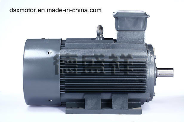 Ie3 Efficiency 200kw Three Phase Asynchronous Electric Motor AC Motor