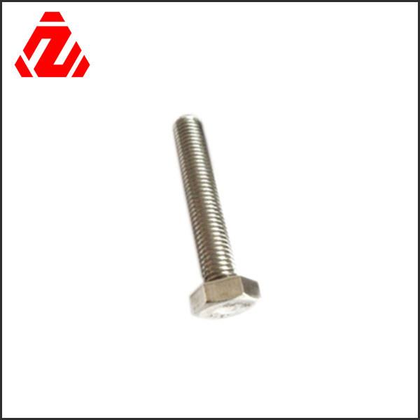 Custom Stainless Steel Hex Bolt