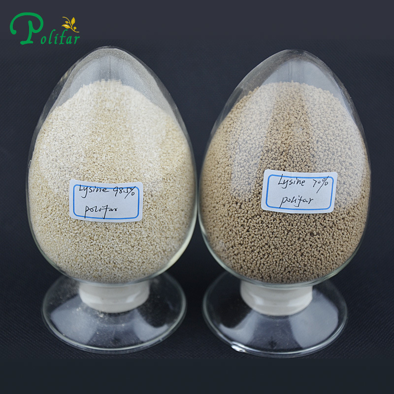 Amino Acid L-Lysine Animal Feed